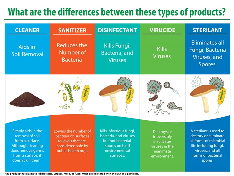 Sanitizers vs. Disinfectants: What's the Difference?