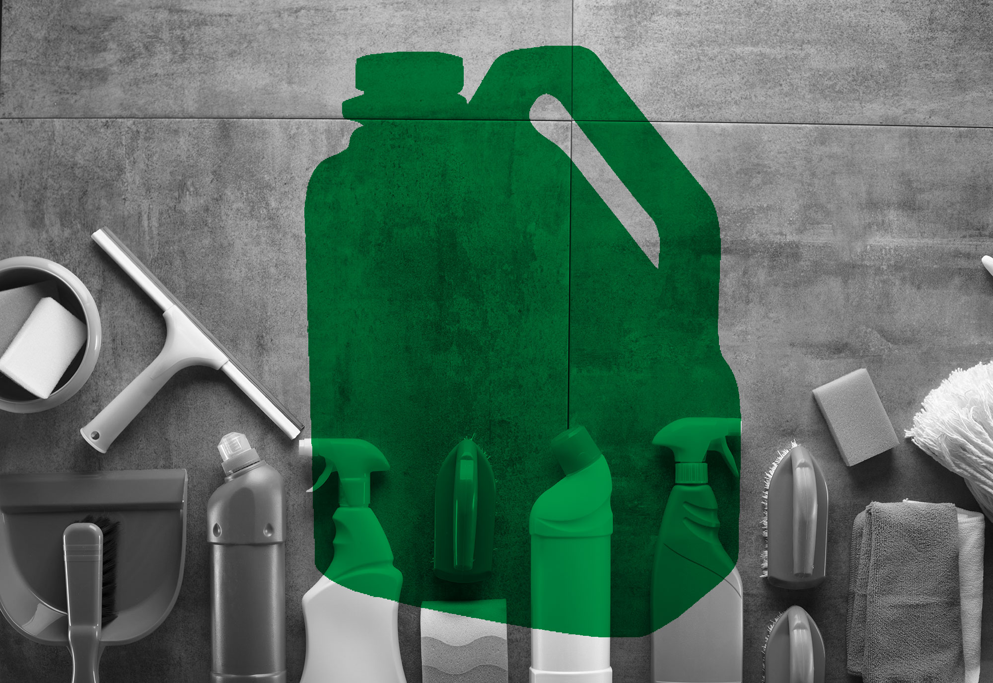 Choosing a Green Cleaning Product